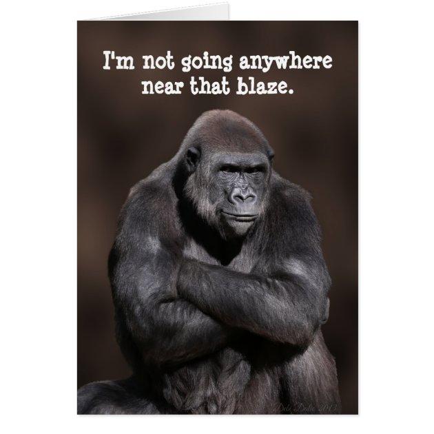 Studio Dalio - Grumpy Gorilla 40th Birthday Card