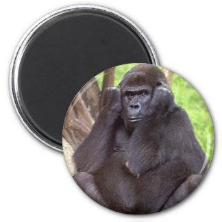 Grumpy Gorilla Magnet