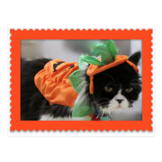 Grumpy Humphries Happy Halloween Postcard
