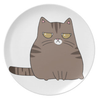 Grumpy Kitty Plate
