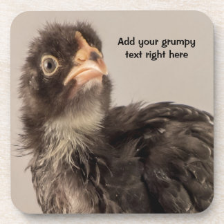Grumpy Looking Black Baby Chick with Frown Beverage Coaster