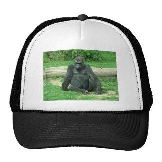 Grumpy Lowland Gorilla Trucker Hat