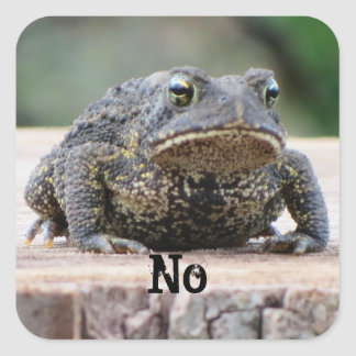 Grumpy Old Toad on a Stump Square Sticker