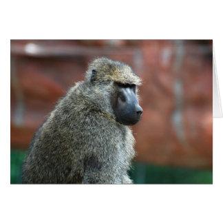 Grumpy Olive Baboon Card
