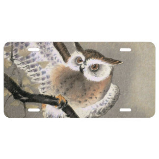 Grumpy Owl License Plate