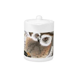 Grumpy Owl Teapot