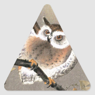 Grumpy Owl Triangle Sticker