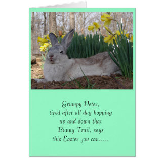 Grumpy Peter CottonTail Greeting Cards