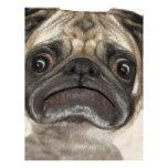 Grumpy Puggy Gifts Custom Letterhead