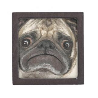 Grumpy Puggy Gifts Jewelry Box