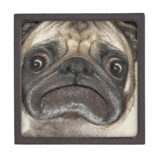 Grumpy Puggy Gifts Keepsake Box