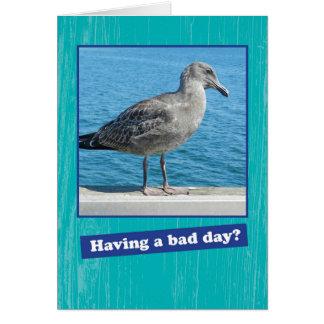 Grumpy Seagull Having a Bad Day Encouragement Card