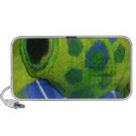 Grumpy Turtle Colorful Green Notebook Speaker