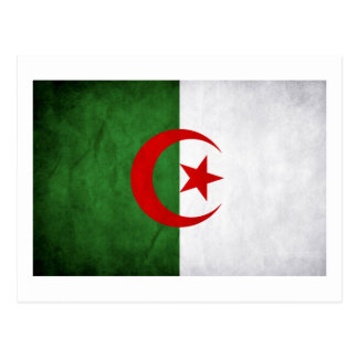 Grunge Algeria National Flag Postcard