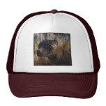 Grunge American Staffordshire Terrier Pitbull Hat