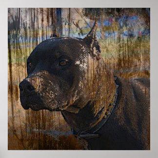 Grunge American Staffordshire Terrier Pitbull Poster