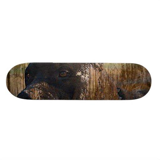 Grunge American Staffordshire Terrier Pitbull Skateboards