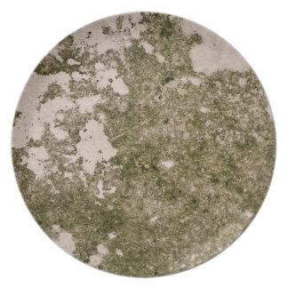 Grunge and grime plate