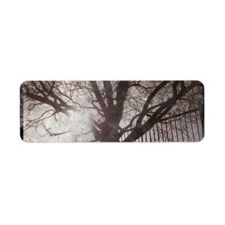 Grunge apenado rústico de la silueta del árbol etiqueta de remite