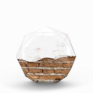 Grunge brick wall acrylic award