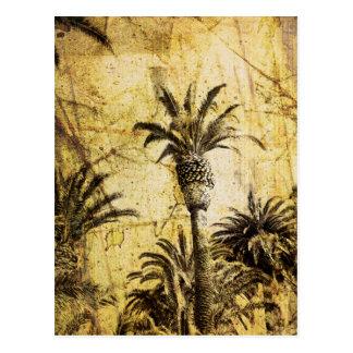 Grunge California Palm Trees Post Card
