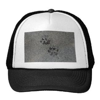 Grunge Cat Paw Prints Trucker Hat