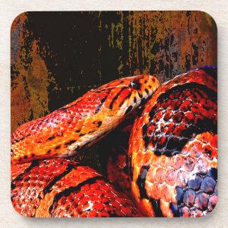 Grunge Corn Snake Coiled Beverage Coaster