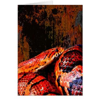 Grunge Corn Snake Coiled Card