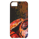 Grunge Corn Snake Coiled iPhone 5C Covers