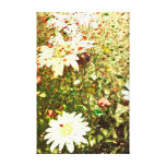 Grunge Daisies Stretched Canvas Print