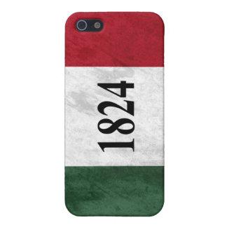 Grunge de 1824 banderas iPhone 5 carcasas