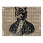 Grunge del gato del Harlequin Tarjetas Postales