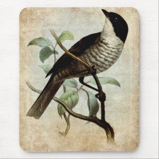 Grunge del pájaro del vintage tapete de raton