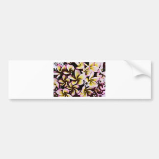 Grunge frangipani bumper stickers