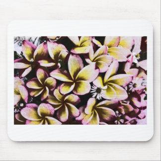 Grunge frangipani mouse pad
