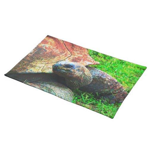 Grunge gigante de la tortuga de Aldabra, parque zo Manteles Individuales
