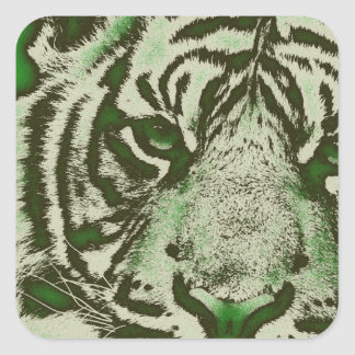 Grunge Green Abstract Tiger Square Sticker