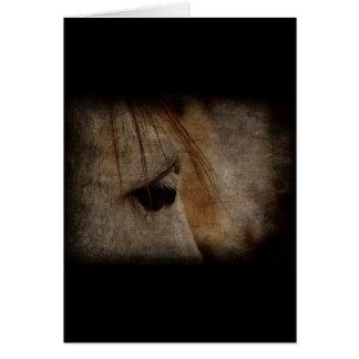 Grunge gris de la cara del caballo tarjeta de felicitación