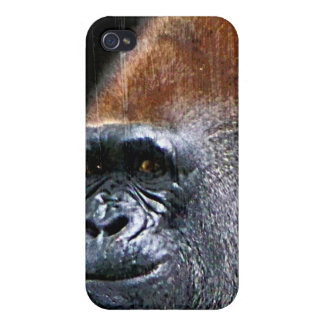 Grunge Lowland Gorilla Close-up Face iPhone 4/4S Case