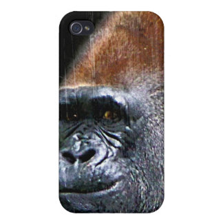 Grunge Lowland Gorilla Close-up Face Case For iPhone 4