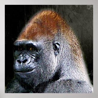 Grunge Lowland Gorilla Close-up Face Poster