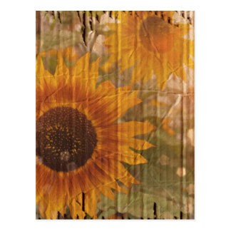 grunge modern country yellow Sunflower Post Cards