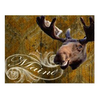 Grunge moose postcard