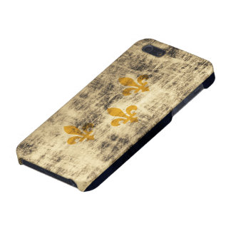 Grunge New Orleans Flag iPhone 5 Cases