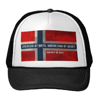 Grunge Painterly Theme Gifts Trucker Hat