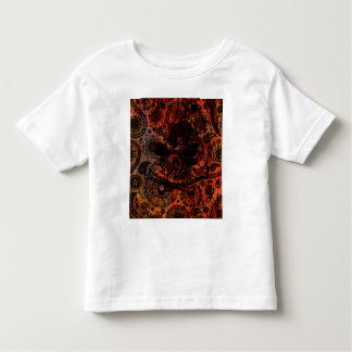 Grunge Paisley and Fire Skull and Crossbones Toddler T-shirt