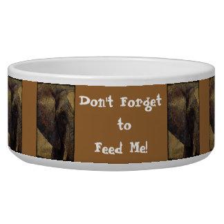 Grunge Parchment Majestic African Elephant Pet Bowl