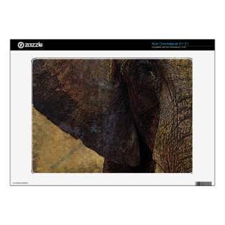Grunge, Parchment Majestic African Elephant Skin For Acer Chromebook