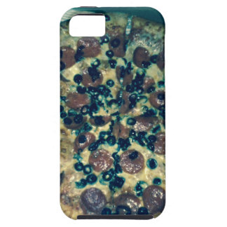Grunge pizza apparel and items case for the iPhone 5