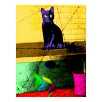 Grunge Pop Art Cat on Fish Tank Postcard